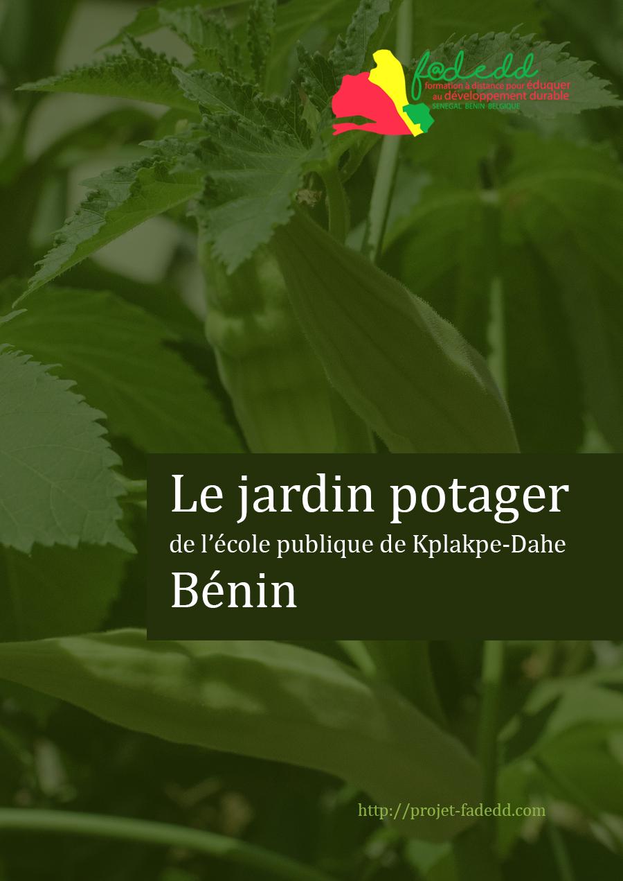 Le jardin potager de l'école publique de Kplakpe-Dahe Bénin